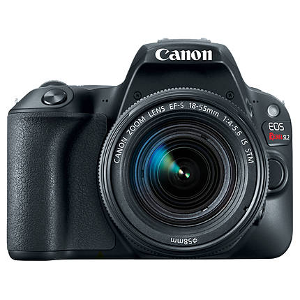 Canon EOS Rebel SL2 Digital SLR with EF-S 18-55mm f/4-5.6 STM Lens - Black