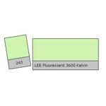 LEE Filters Fluorescent 3600k Lighting Correction Gel Filter