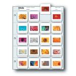 Print File 2X2-20B (100) Slide Pages