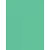 Savage Widetone Seamless Background Paper - 107in.x50yds. - #40 Mint Green