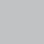 Savage Background 53x36 Gray Tint